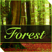 XPERIA™ Forest